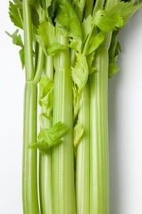 Social Media is like Celery
